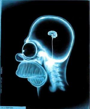 ¿Quieres que tu cerebro crezca? Medita